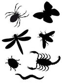 Beetles and insects silhouette — Foto Stock