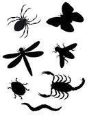 Silhueta de besouros e insetos — Foto Stock