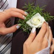 Hands fiancee on the buttonhole of groom — Stock Photo