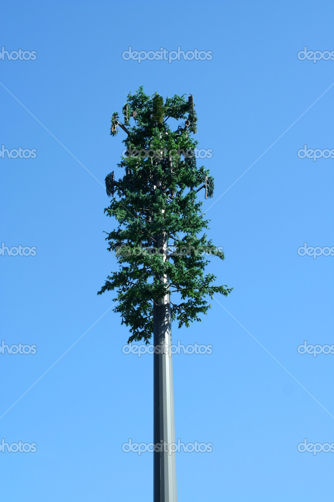 A Tree cell phone tower — Stock Photo #2709975