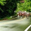Bicycle road race — Stock Photo #3288921