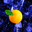 Orange and ice — Stock Photo