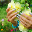 Manicure on real nails and yellow hollyhock flower — Stock Photo #3805972