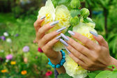 Manicure on real nails and yellow hollyhock flower — Stock Photo