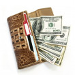 Brown croco leather wallet with dollars — Zdjęcie stockowe #3677473