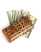 Brown croco leather wallet with euros — Stock Photo
