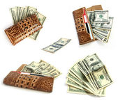 Collection: Brown croco leather wallet with dollars — Stock Photo