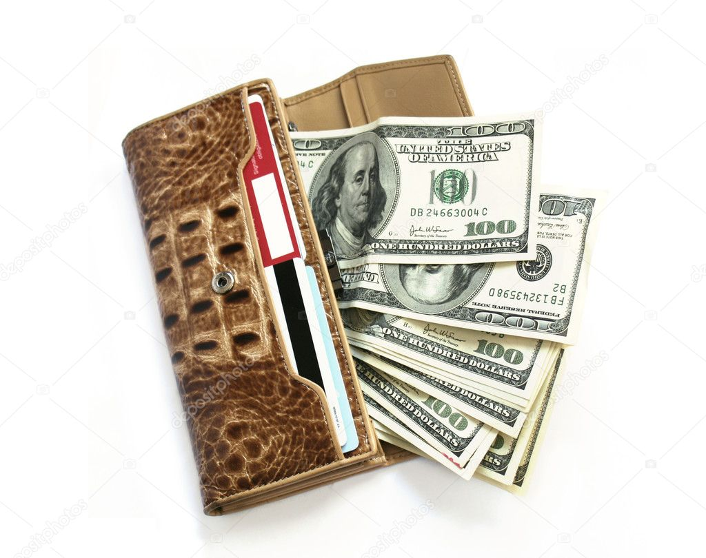 Brown croco leather wallet with dollars isolates on white — Stock Photo #3677473