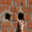 Stock Photo: Hand on brick wall