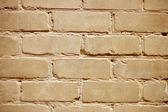 Fundo de uma parede de tijolos — Foto Stock