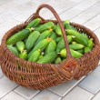 Basket is filled by cucumbers — Stock Photo