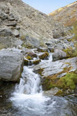 Stream with a waterfall — Stock Photo