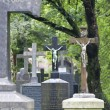 Munich south cemetery — Stock Photo
