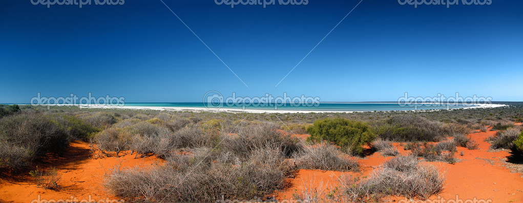 An image of the beautiful Shark Bay in Australia — Stock Photo #3710787