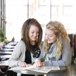 Two girls studying - Stock Photo