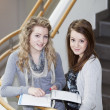 Stock Photo: Two girls studying
