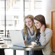 Two girls with computer — Stock Photo #2718960