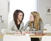 Två tjejer som studerar — Stockfoto