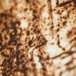 Royalty-Free Stock Photo: Rusty Material
