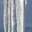 Melting icicles vertical — Photo