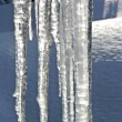Melting icicles vertical — Stock Photo #2748637