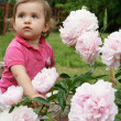 Baby and peonies — Stock Photo