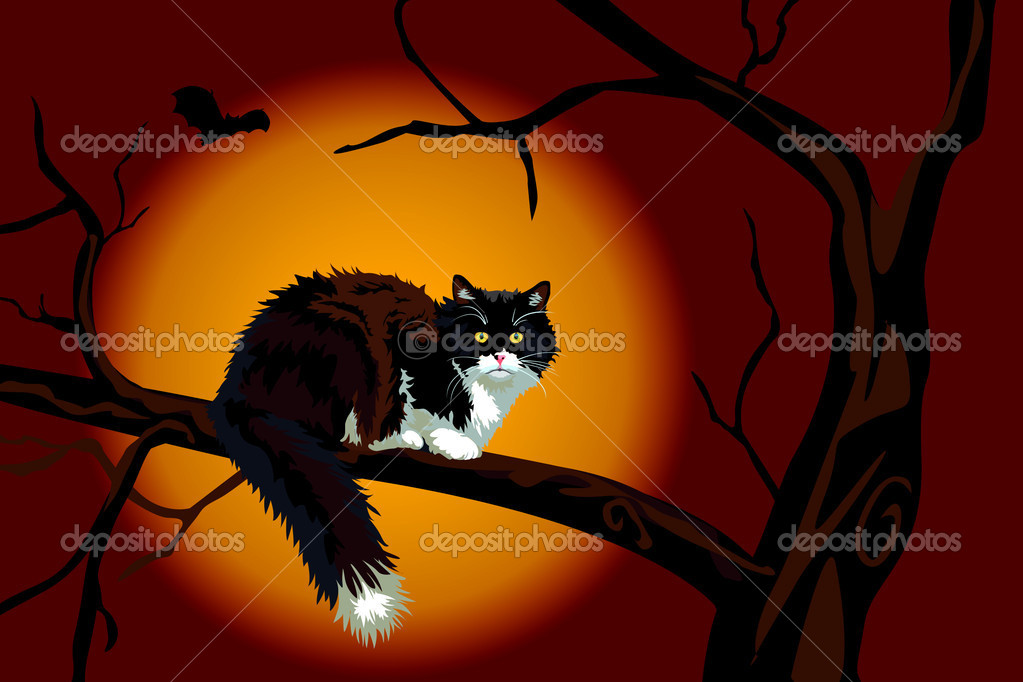 Halloween realistic calico black and white cat on a large branch up a tree looking at you. Scary. — Stock Photo #3691777