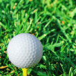 Vertical of golf ball and grass — Stock Photo