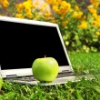 Laptop and apple blank screen — Stock Photo #3814424