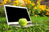 Laptop and apple blank screen — Stock Photo