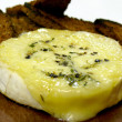 Camembert cheese with thyme - Zdjęcie stockowe