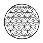 Flower of life vector — Vector de stock