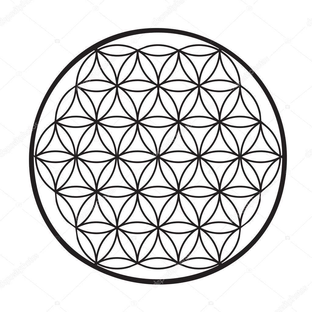 Geometrical figure composed of multiple overlapping circles, arranged so that they form flower pattern  symmetry like a hexagon, called the flower of life — Stock Vector #2821330