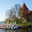 Trakai Island Castle, Lithuania — Stock Photo #2749220