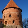 Trakai Island Castle, Lithuania — Stock Photo #2749330