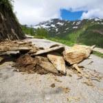 Road in Switzerland Alps — Stock Photo