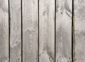 Wood board fence — Stock Photo