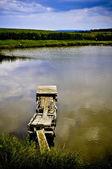 Fishing pond — Stock Photo