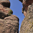 The rocks of Belogradchik — 图库照片