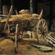 Cart with hay — 图库照片