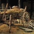 Cart with hay - Stock Photo
