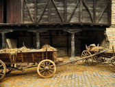 Cart with hay — Stock Photo