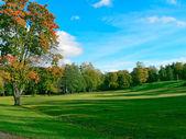 Autumnal landscape — Stock Photo