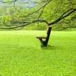Chair on green field — Stock Photo