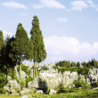 Stock Photo: Mystery stone forest