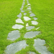 Stone path — Stock Photo