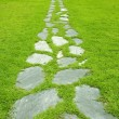 Stone path — Stock Photo #2764727