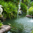 Tropical zen garden — Stock Photo
