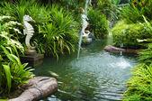 Tropikal zen bahçesi — Stok fotoğraf