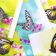 Butterfly postcard — Stock Photo